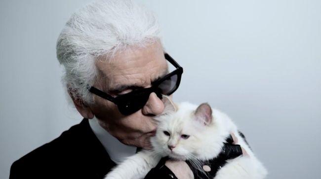 """<!--:bg-->Котката на Карл """"влиза"""" в модния свят<!--:-->"""