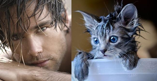 Горещи мъже vs. сладки котета (II част)