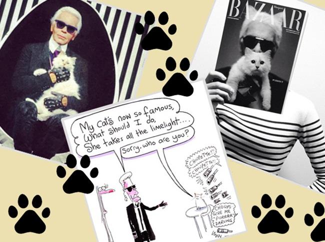 <!--:bg-->Известните домашните любимци на модните знаменитости<!--:-->