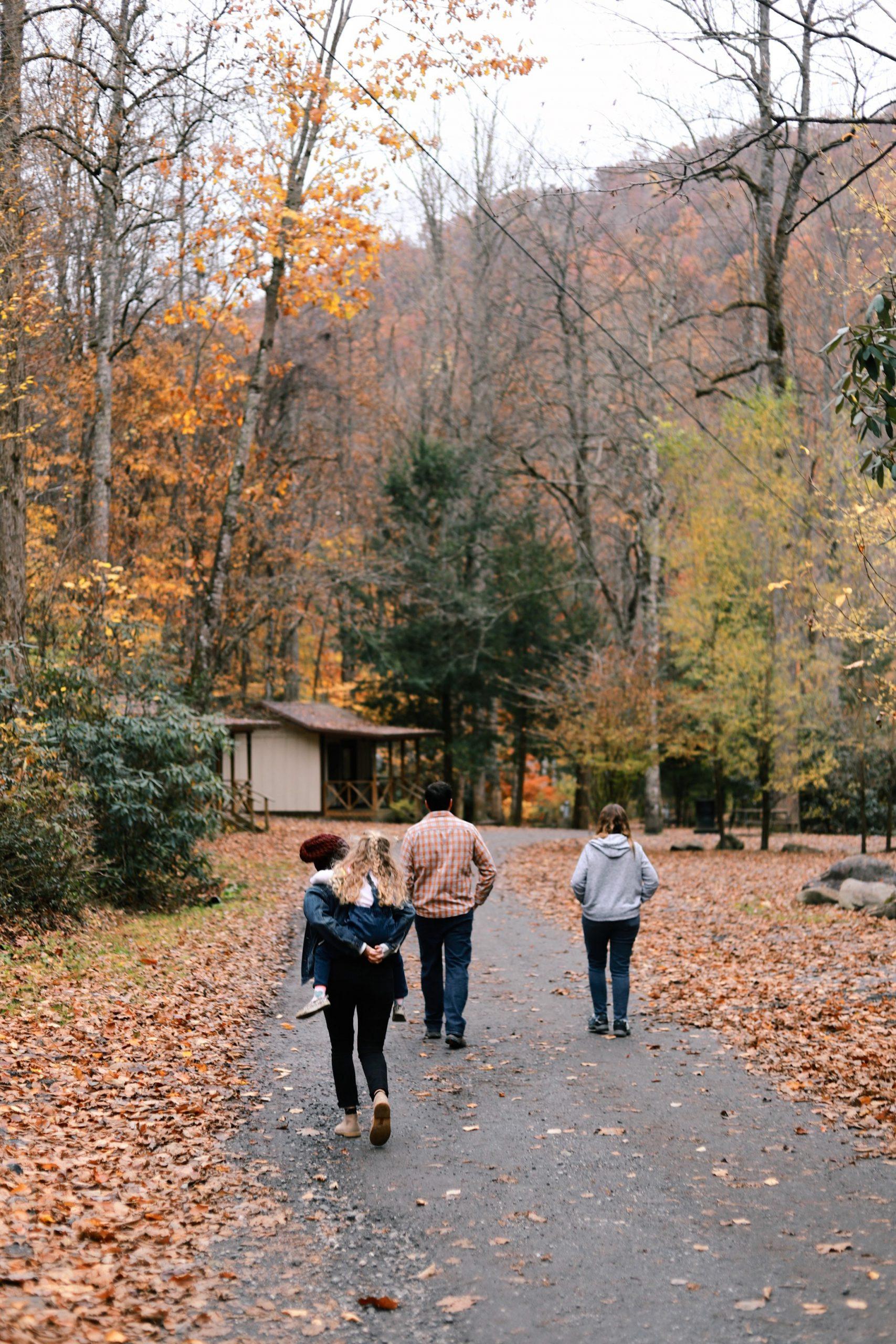 Готови за есента: как да подсилим имунитета си?