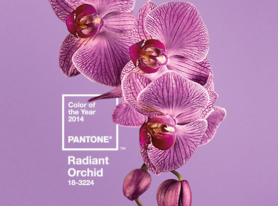 pantone-color-of-the-year-2014