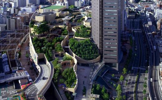 От покрив до основи – зелената градска среда