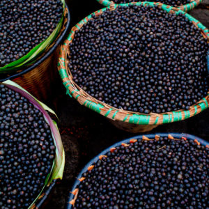acai-gettyimages-148989601_v650xx