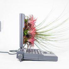 Другият живот на компютрите