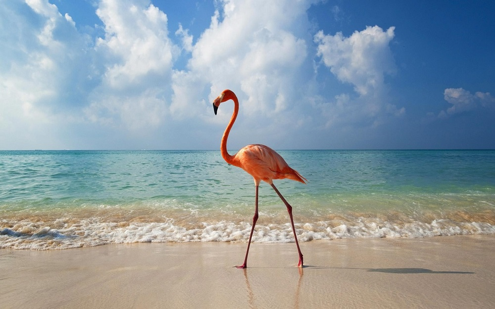 Мирис на море от най-добрите плажове на света (2 част)