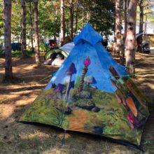5 (супер) причини да изпратите лятото от Offshore Camp