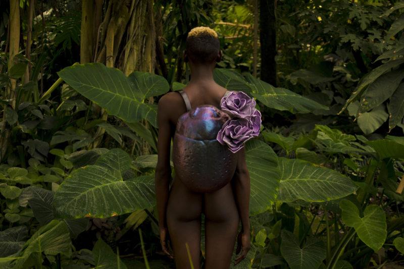 Imago и тайната джунгла на  Kofta