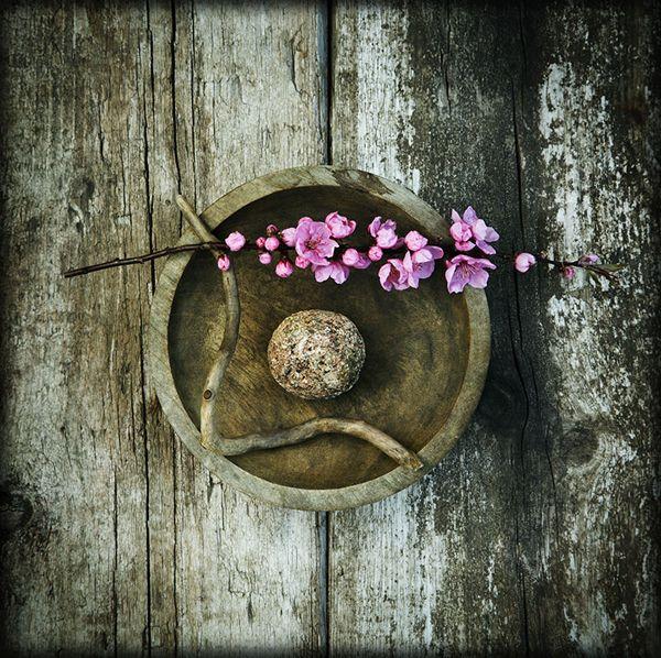Красотата в несъвършенството – уаби-саби