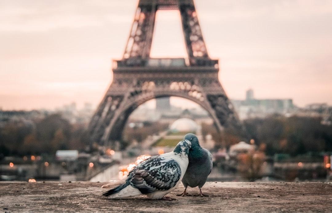 Париж на лудите