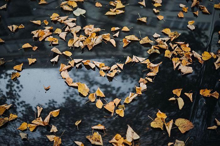 Eсен ли ще си, или да те обичам?!