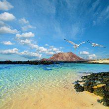 """7 причини да кажете """"да"""" на Канарските острови през март"""