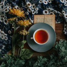 Чаят – елементарна теория и практика