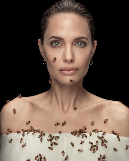 Снимка на деня: Анджи и пчелите